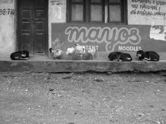 RS Chicken noodles by Tanvir Bush